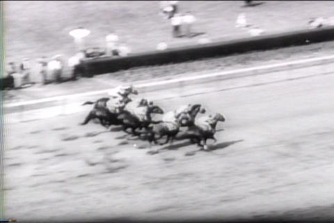 Horses race for charity during World War two at th Footage