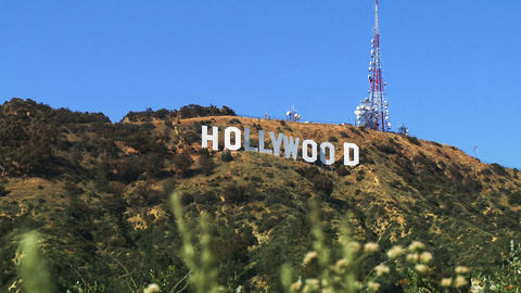 Hollywood Sign, Wide with Foreground Stock Video Footage
