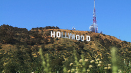 Hollywood Sign, Wide with Foreground Footage