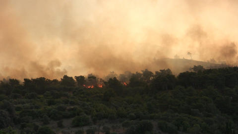 Forest fire - MA 2007waldbrand07 Stock Video Footage