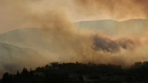 Forest fire - MA 2007waldbrand11 Stock Video Footage