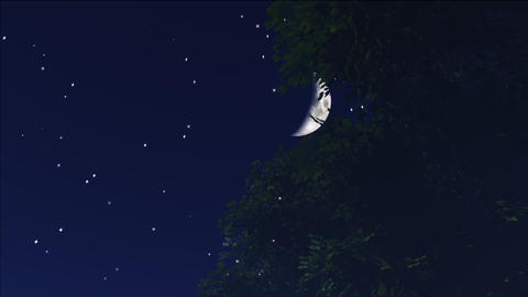 night stars 11 Stock Video Footage