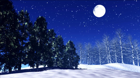 night stars 24 Stock Video Footage