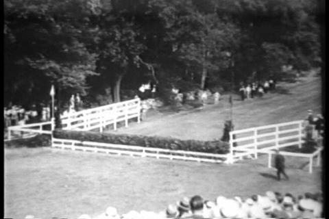 A steeplechase horse rider is injured in a fall in Footage