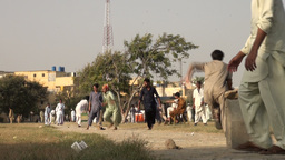 Cricket field in Karachi, Pakistan Footage