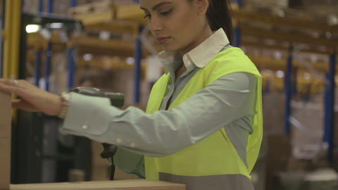 Woman Working In Logistic Warehouse stock footage