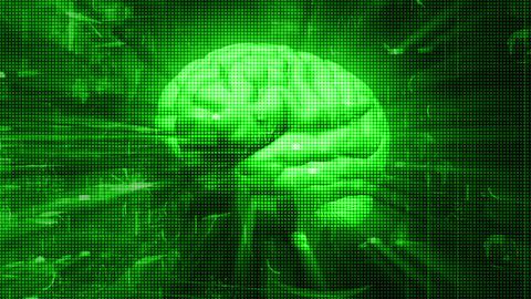 Digital Brain 2 Animation