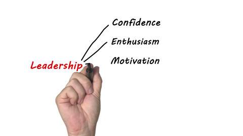 Leadership Animation
