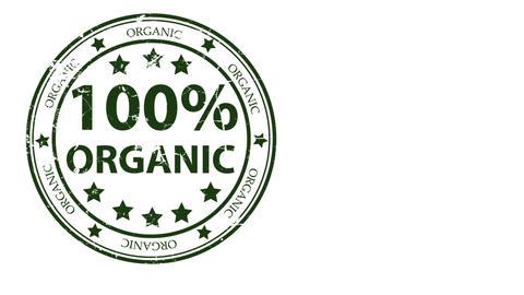 Organic Animation