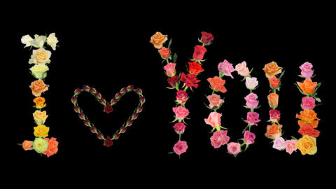 "Montage ""I love You"" Valentine roses time-lapse 2x Footage"