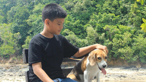 Boy And Dog Sitting Together stock footage