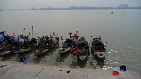 Fish market at pier,float fish boats,china asia Animation