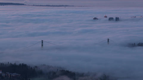 Lions Gate Bridge cover by intense fog Footage