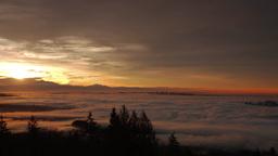 Morning sunrise shining on fog covering city Footage