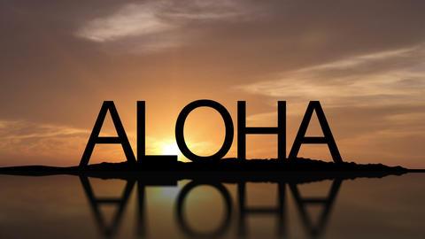 Aloha, Hawaii Sunset Timelapse Footage
