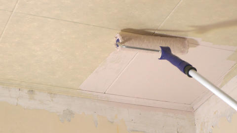 Ceiling painting Live Action