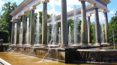 Lion cascade fountain in petergof park St. Petersb Footage