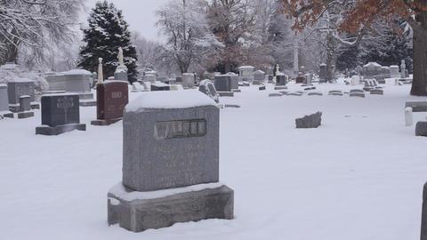 Slow Unstable Walk through Cemetery Footage