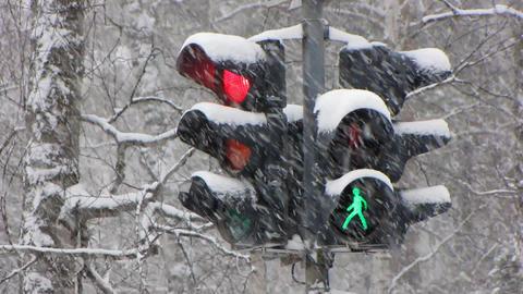 Snowfall 15 1 Stock Video Footage