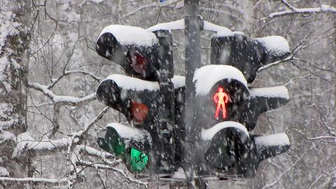 Snowfall 16 1 Stock Video Footage