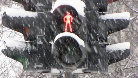 Snowfall 19 Stock Video Footage
