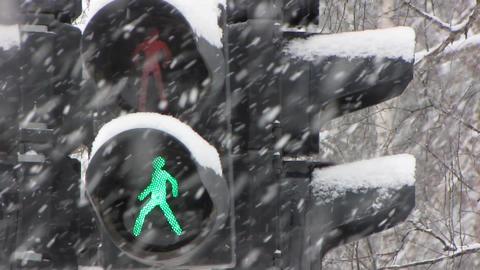 Snowfall 21 Footage