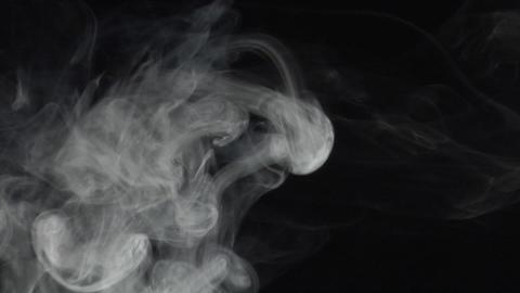 smoke series:Anemonica Stock Video Footage