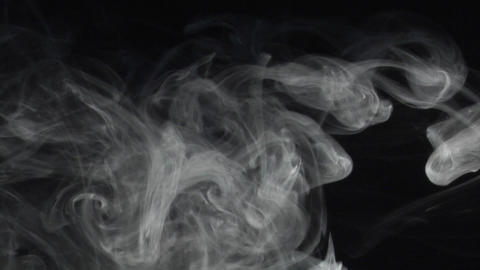 smoke series:Anemonica Stock Video Footage