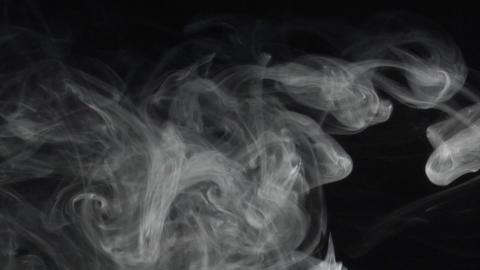 smoke series:Anemonica Footage