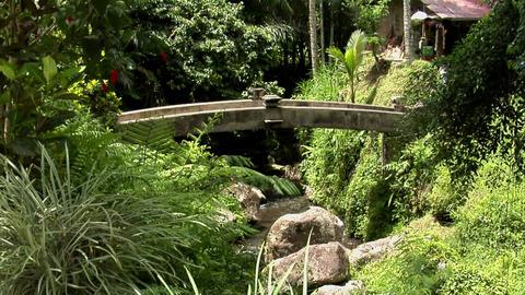 bridge water Stock Video Footage