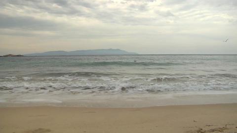 beach 116 Stock Video Footage