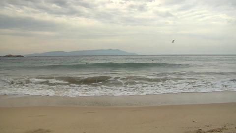 beach 116 Footage