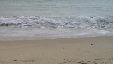 beach 202 Footage