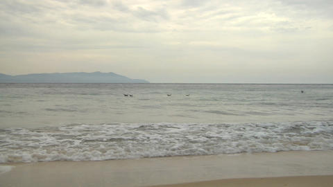 beach 204 Footage