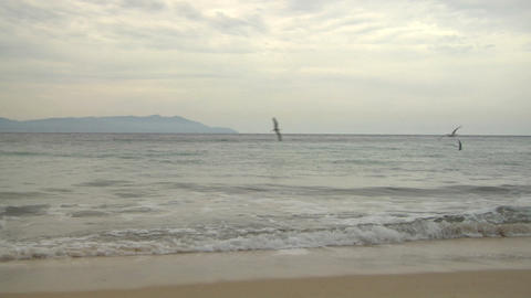 beach 204 Stock Video Footage