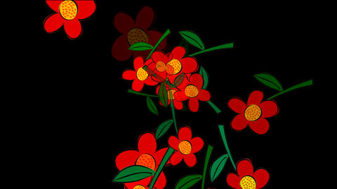 flowers fly Stock Video Footage