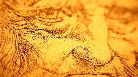 Leonardo da Vinci anatomy Footage