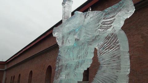 Ice sculpture Footage