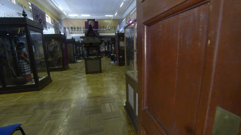 The Rooms Of The Museum. Kunstkamera. Saint-Peters stock footage