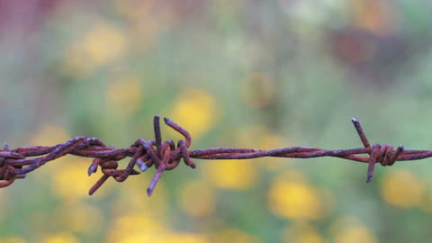 Old Barbed Wire Knot Macro Dolly Footage