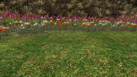 color wildflower in garden,stone pillars,3d landscape Animation