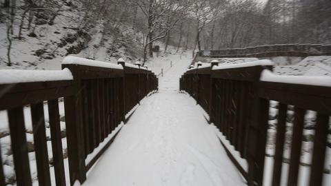 Snowy Korean Mountains Glide Cam 2 Footage