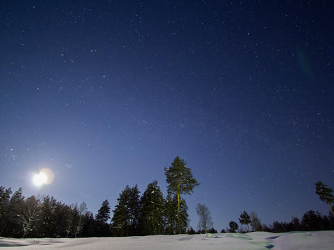 The moon sets behind forest. Time Lapse. 4x3 Footage
