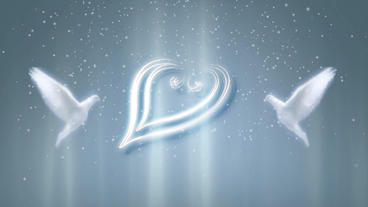 Hearts & Doves stock footage