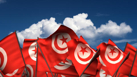 Waving Tunisian Flags Animation
