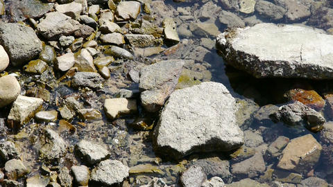 clear & transparent Repulse Bay ripple,Sparkling lake,gravel Animation