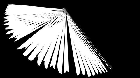 Spiky star uniform Animation