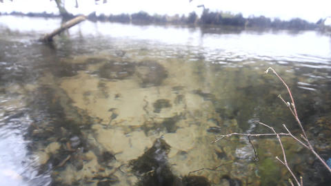 deep river with transparent water Footage