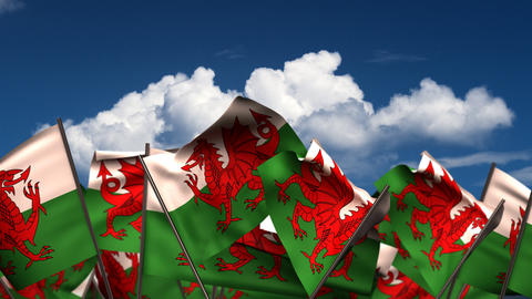 Waving Welsh Flags Animation