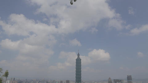 Taipei 101 wind dampener Live Action